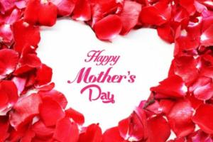 母の日お祝いなし,母の日何もない,母の日プレゼントもらえない,母の日催促大丈夫?,母の日貰えない人いる?,母の日くれない子供理由,母の日お祝いしない理由